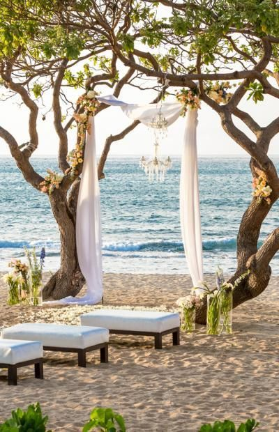 Beach-Wedding-tree-Mimetik-Bcn