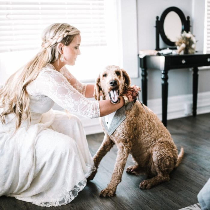 dog-in-rustic-wedding