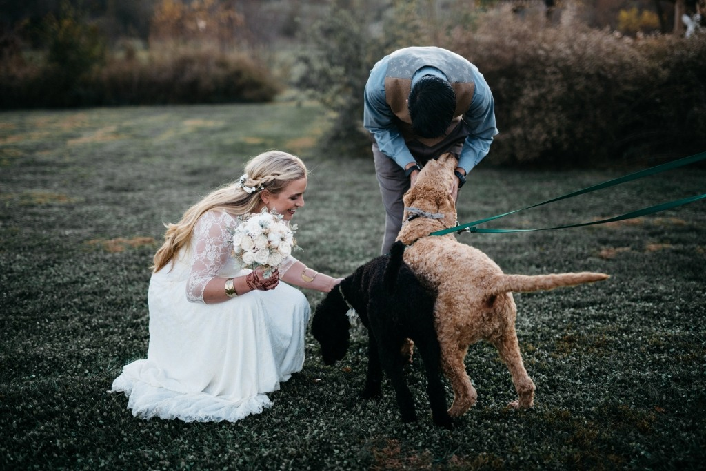bohemian-wedding-with-dogs